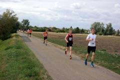 Volkslauf _ 2018 _ 10 _ Läufer auf der Strecke _ (3)