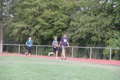 Volkslauf _ 2018 _ 11 _ Läufer zurück im Stadion _ (240)